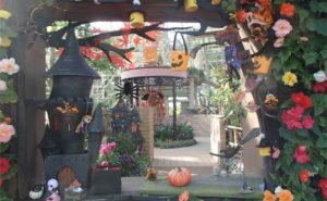 花の展示温室 ハロウィンガーデン