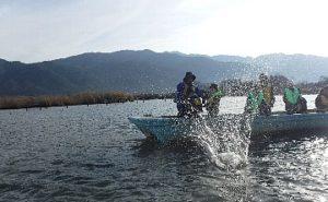 伝統漁法に挑戦しよう!たたき網